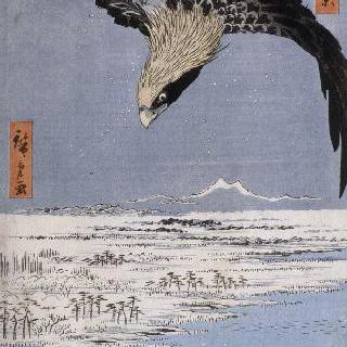 명소에도백경: 후카가와의 수사키 들판