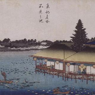 시노부 가오카의 연못, 시리즈 : 동경의 명소들