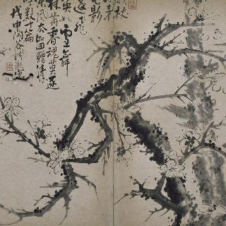 그림첩 : 양자두나무 꽃