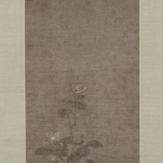 꽃이 핀 최상급 차나무 가지