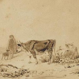 어린 목동, 소떼와 양떼