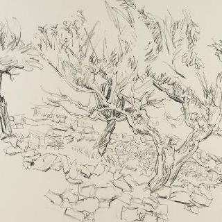 이갈리에르의 아몬드나무들
