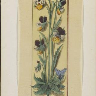 화첩 : 식물 장식 : 팬지 꽃다발