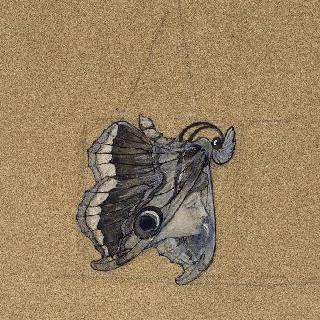 나비 모양의 목걸이 보석과 여인 옆모습 습작
