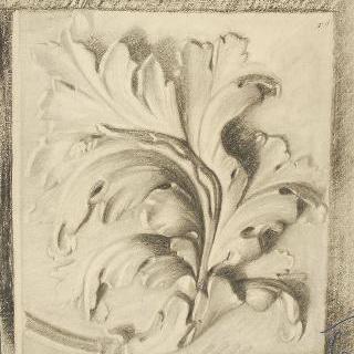 아칸더스 잎 장식의 석고 주조
