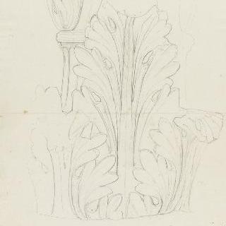 로마 복수하는 마르스의 신전, 기둥머리의 아칸다스 잎