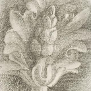 아칸더스 잎 장식