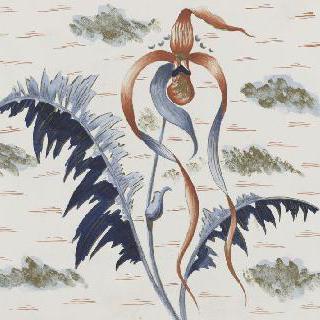꽃 소재 장식을 위한 모델 : 난초과