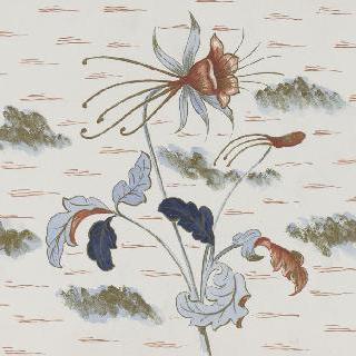 꽃 소재 장식을 위한 모델 : 매발톱꽃
