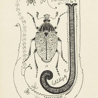 채색된 문자 J, 곤충의 모습