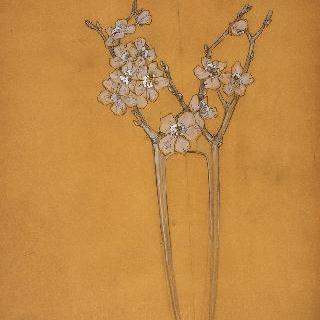 산사나무 꽃의 머리빗 계획안