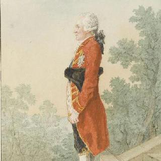 브룬스윅 세습 왕자, 웨일스 공주