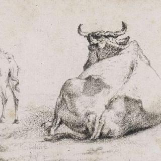 누워있는 소와 돼지