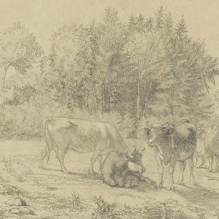 노르망디 지방 에코르슈뵈프의 방목장