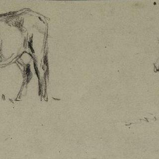 세 마리의 소