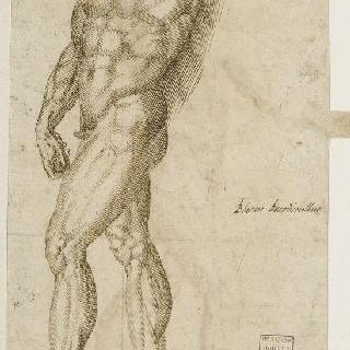 왼쪽으로 걸어가는 왼팔이 잘린 서 있는 남자의 나체