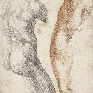 남자와 오른쪽 팔의 일부 형상