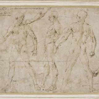 정면, 뒷모습과 옆모습의 남자 나체의 습작 3점과 누드화 습작 2점