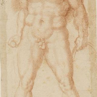 서 있는 수염 난 남자의 정면 나체화 : 헤라클레스