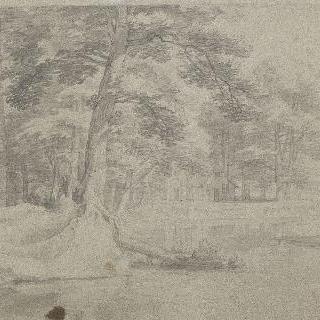 나무들로 둘러싸인 호수의 풍경