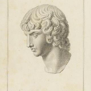 안티노우스의 두상