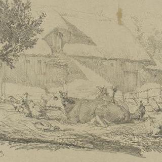 두 마리의 소와 암탉들이 있는 농가의 뜰
