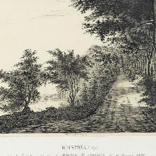 1871년 1월 19일 코리오리스 후작이 살해당한 장소 부근의 프레오 숲