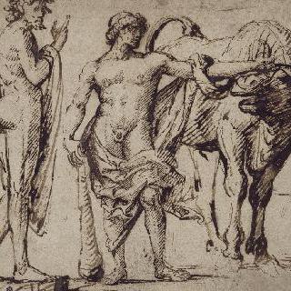 헤라클레스와 크레타의 황소