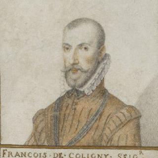 프랑수아 드 콜리니, 안들로 영주 (1521-1569)