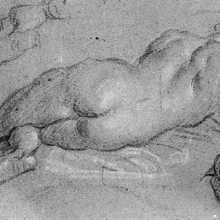 누워있는 벌거벗은 여인 뒷모습 습작과 반복된 발과 팔