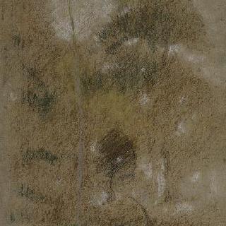 잎이 무성한 나무가 있는 풍경