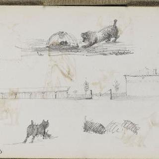 화첩 : 가옥과 고양이와 개 크로키