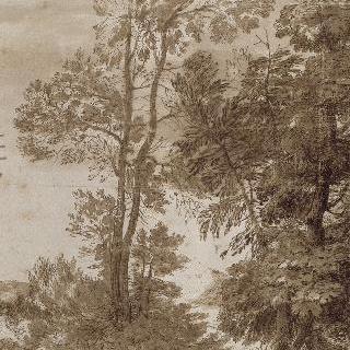 두 그룹의 나무