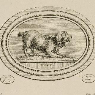 왕실 조각사 귀에 (1711-1793)의 조각돌 풍의 판화 연속 : 짖고 있는 개