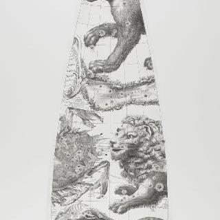 C. 코르넬리우스에 의한 1700년 천구의 모델 : 게 자리