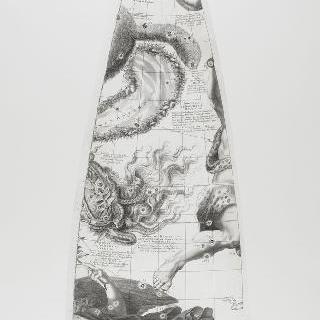 C. 코르넬리우스에 의한 1700년 천구의 모델 : 처녀 자리