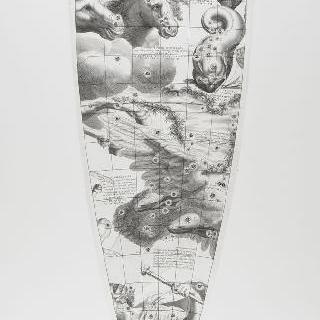 C. 코르넬리우스에 의한 1700년 천구의 모델 : 돌고래 자리