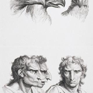 판 13 a와 13 b : 세 개의 독수리 머리와 독수리에 연관된 인간 두상 셋