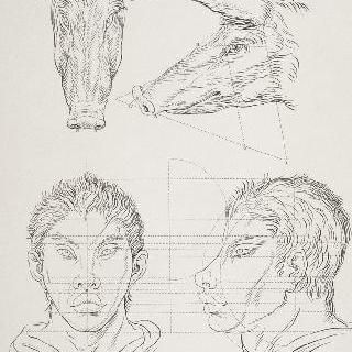 판 9 : 두 돼지 머리와 돼지와 연관된 인간 두살 두 개