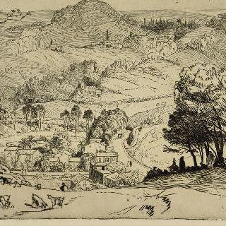 알제리 시골, 염소들이 있는 언덕 전경