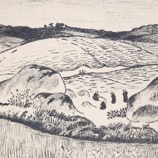 브르타뉴 지방 대지