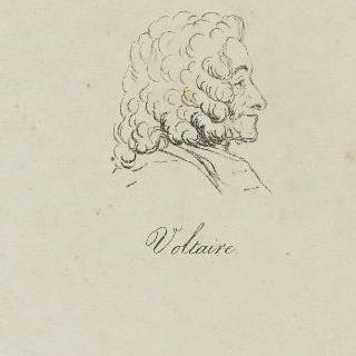 볼테르 (1694-1778), 노년 시절 프로필, 1778년