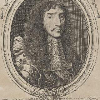 안느, 노아이유 공작, 왕 호위대장 (1678년 사망)