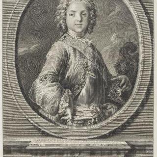 루이 드 프랑스, 왕세자, 루이 15세 아들 (1729-1765)