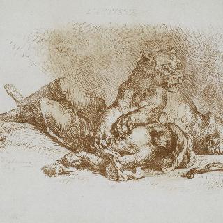 아랍인의 시체 위에 있는 암사자 또는 아랍인의 가슴을 찢어 놓은 암사자 ; 1849년