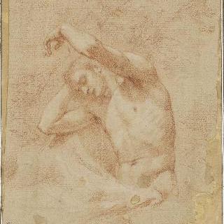 왼팔을 높이 들고 나무에 기대 앉아있는 벌거벗은 남자의 반신상