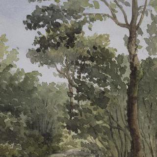 기욤 숲의 별 숲 (루앙 근처)