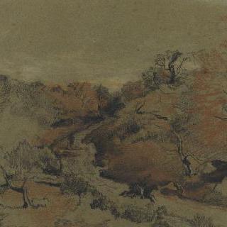 저녁 숲이 우거진 언덕 사이의 도로를 빨리 달리는 말 위의 기병