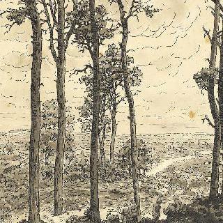 1914년-1918년 전쟁 장면