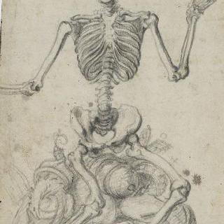 인간 존엄성 위에 앉아있는 뼈대